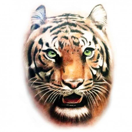 Tatoo temporaire t te de tigre r aliste couleur - Image tete de tigre ...